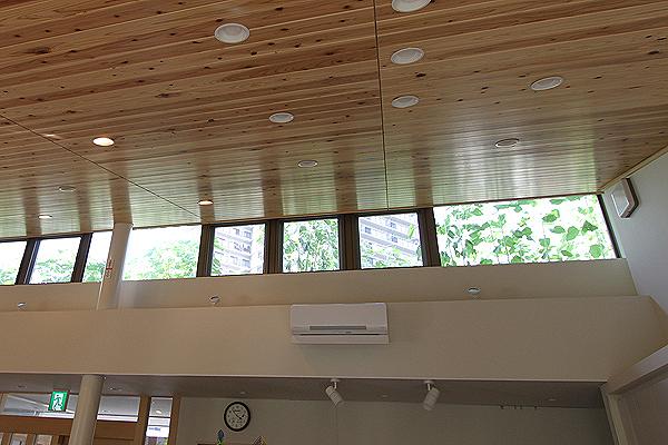 2013年7月わくわくサロンの屋上緑化